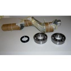 Shaft Kit B3800 B3800B NS 18 compressor pumping group ABAC NUAIR Ceccato