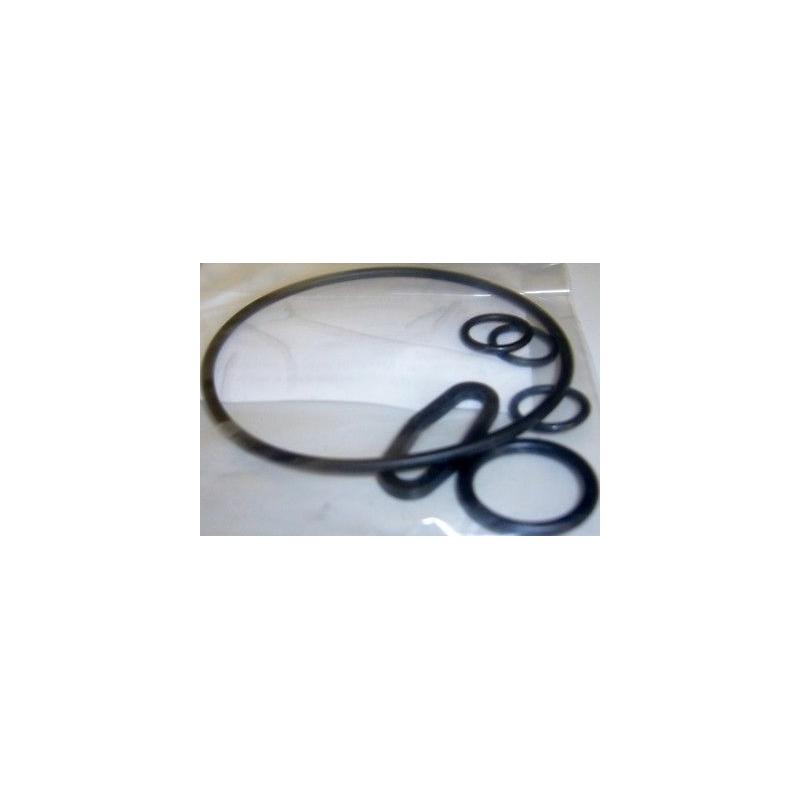 KIT ORING O-RING GUARNIZIONE POMPA IDROPULITRICI LAVORWASH ORIGINALI 6.005.0226